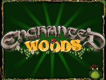 Enchanted Woods - онлайн-игра от Microgaming на сайте Вулкан